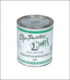1 Shot® Speed Dry Acrylic Clear Coat