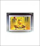 Crystal LED Acrylic Display