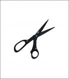 Elan Scissors